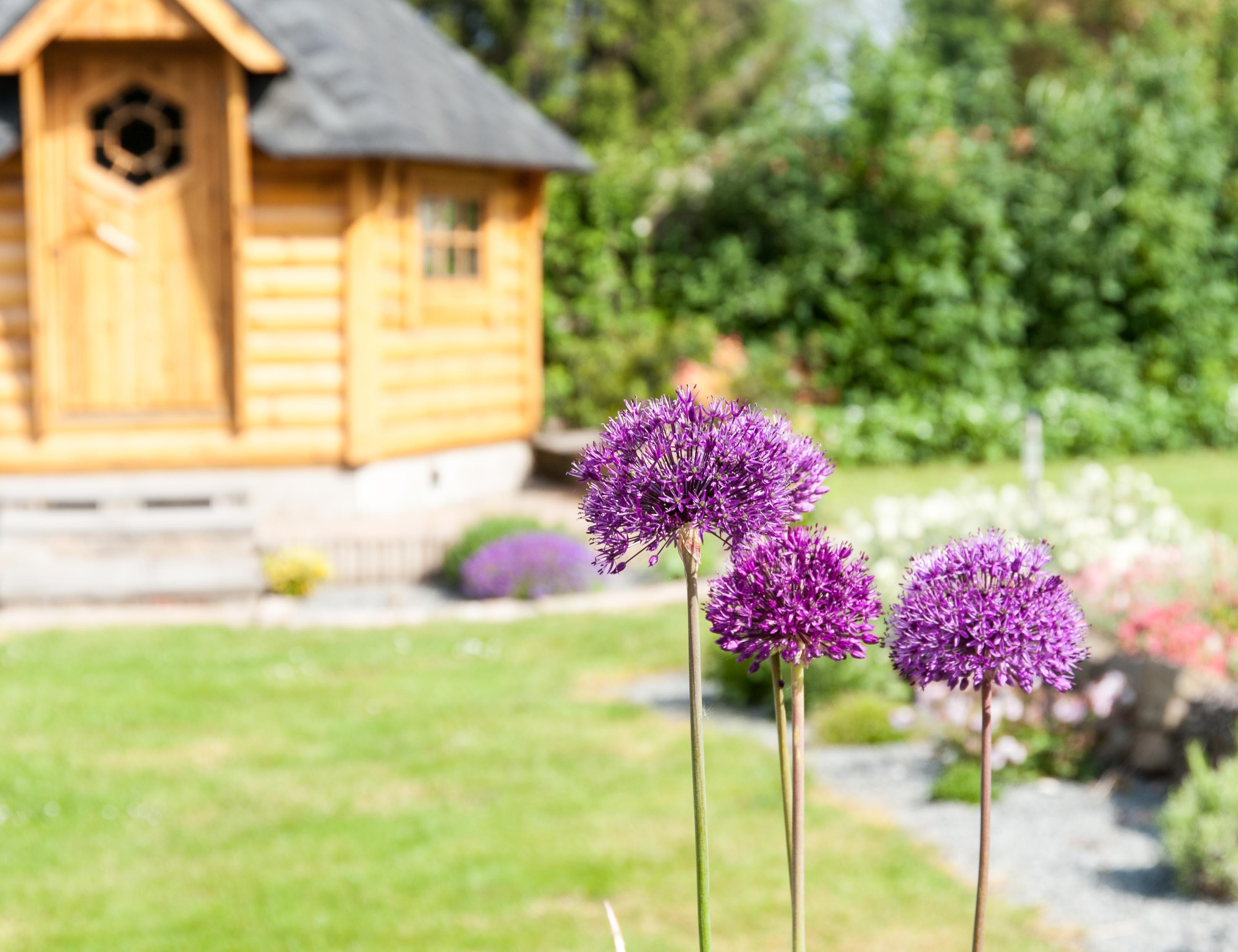 la cabane de lenale jardin fleuri la cabane de lena. Black Bedroom Furniture Sets. Home Design Ideas
